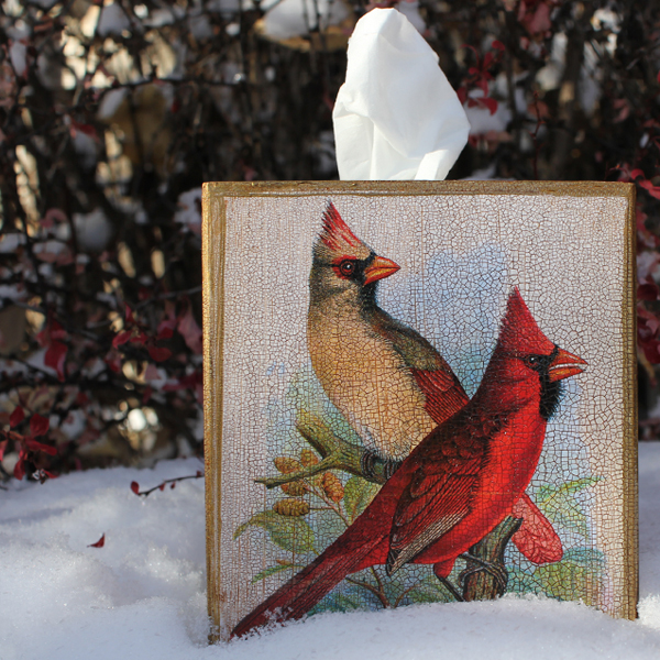 Cardinal Tissue Box Cover