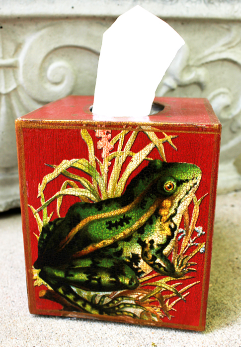 Frog on Red Tissue Box Cover