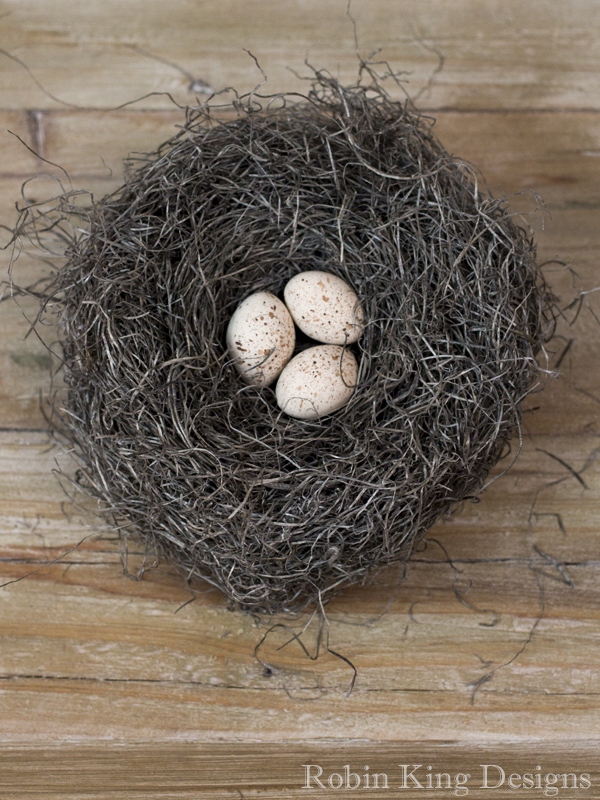 Aged Ivory Speckled Eggs in Bird Nest