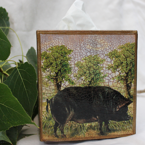 Black Pig Tissue Box Cover