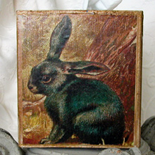 Brown Rabbit Tissue Box Cover