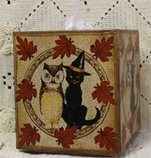 Owl and Cat Tissue Box Cover