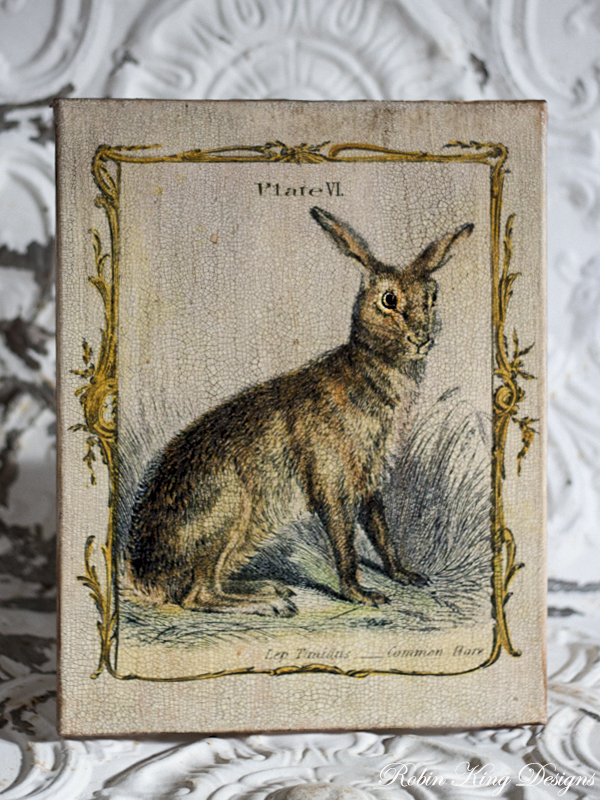 Common Hare 8 by10-inch Decoupage Canvas Art