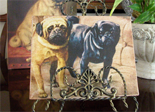 Fawn and Black Pug Canvas