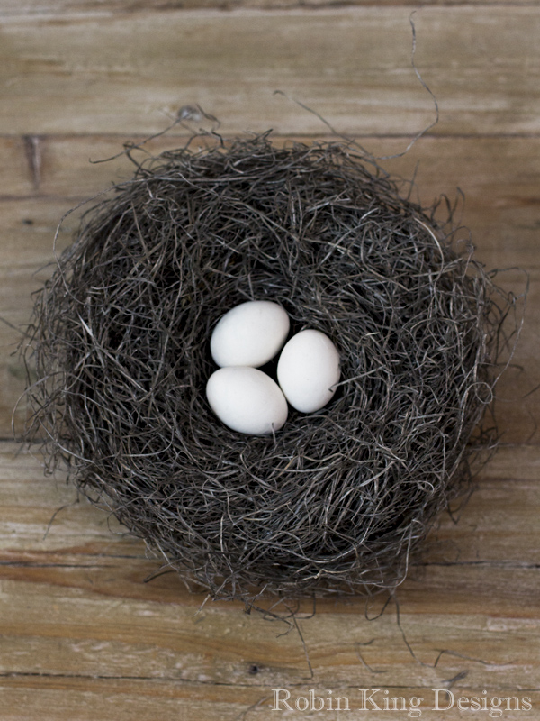 Ivory Eggs in Bird Nest