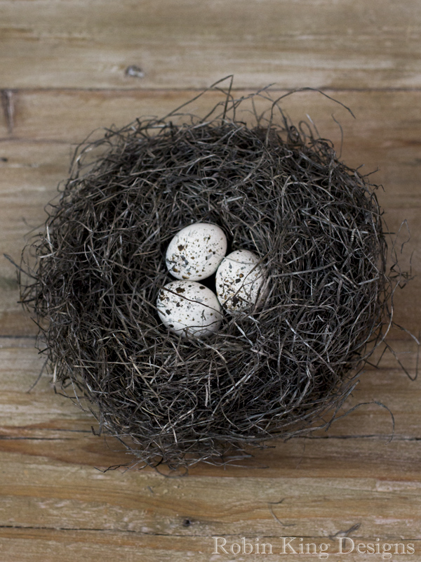 Ivory and Black Speckled Eggs in Nest