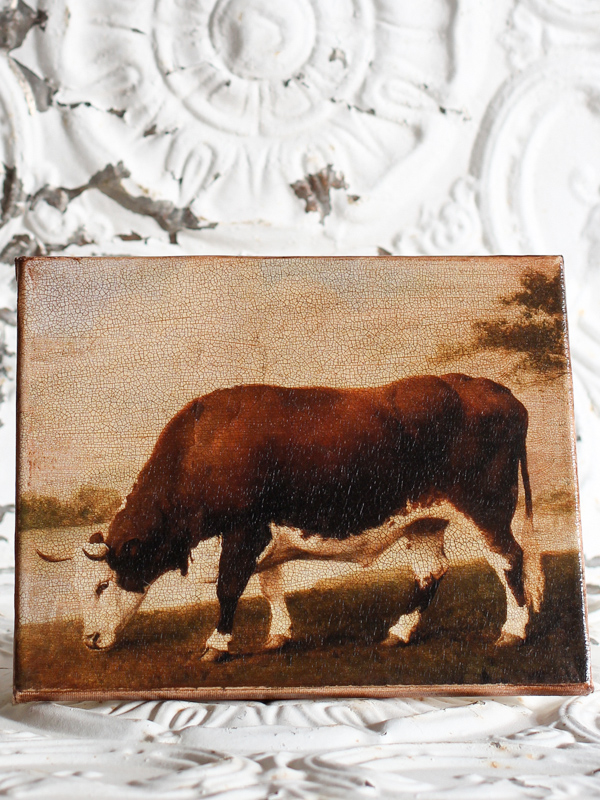Lincolnshire Ox 8 by 10-inch Decoupage Canvas Art