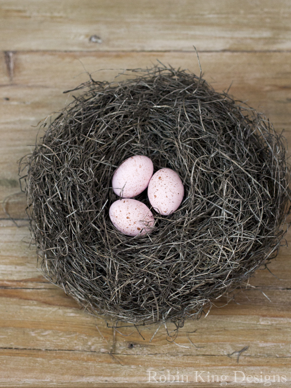 Pink Speckled Eggs in Bird Nest