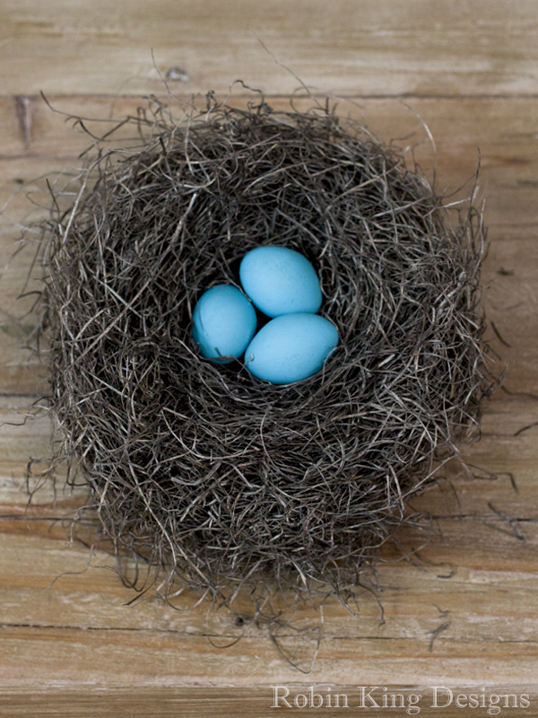 Blue Eggs in Bird Nest