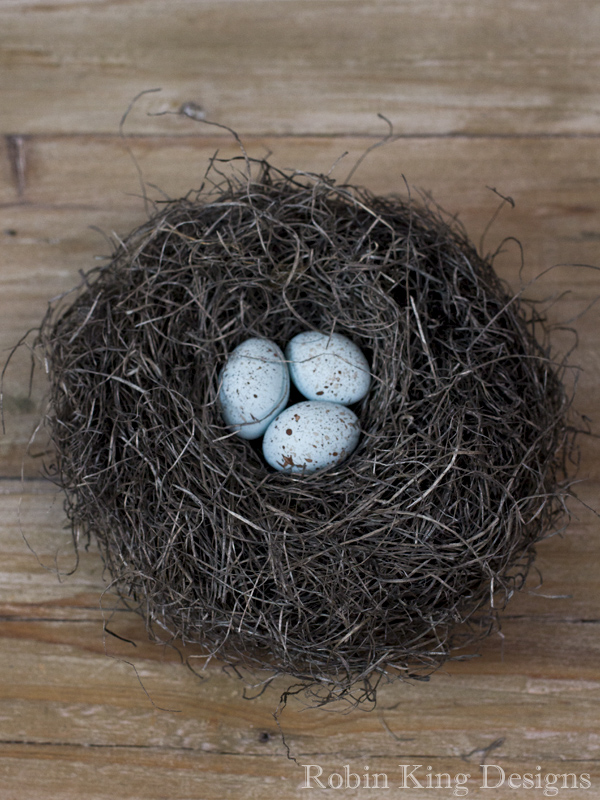 Blue Speckled Eggs in Nest