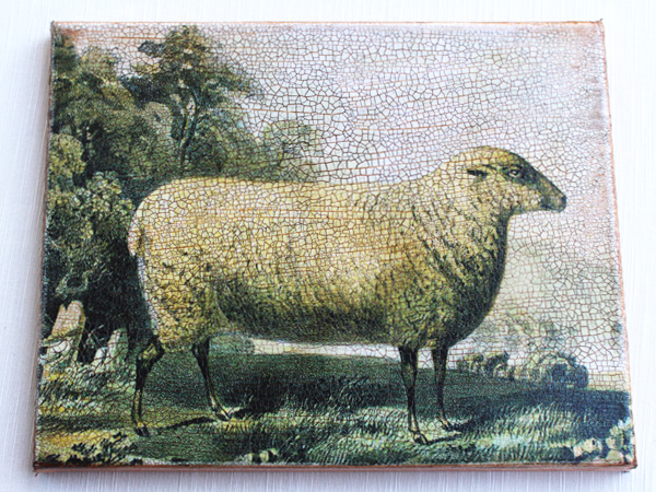 A Sheep in Field Canvas