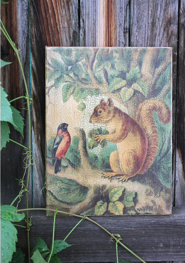 Squirrel in Tree 8 by 10-inch Decoupage Canvas Art